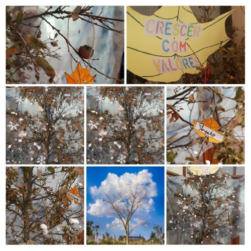 20190321_091204-COLLAGE
