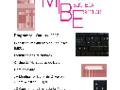Programa do MIBE no AESL